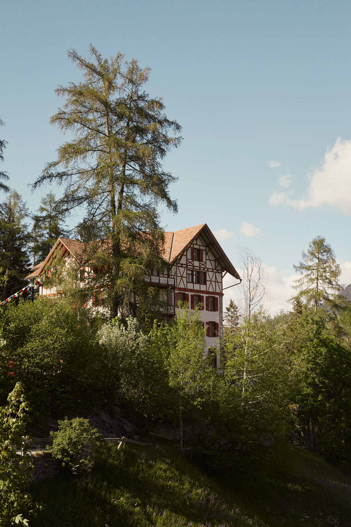 Das Waldhotel vom Weihler Pradaschier aus